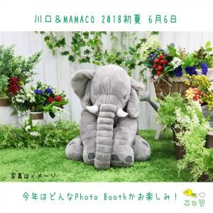 20180606kawaguti
