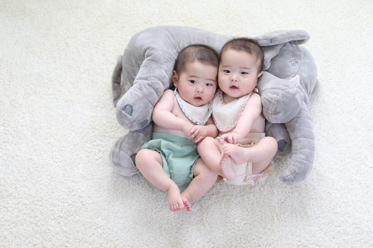 ことりの双子ちゃんたち4